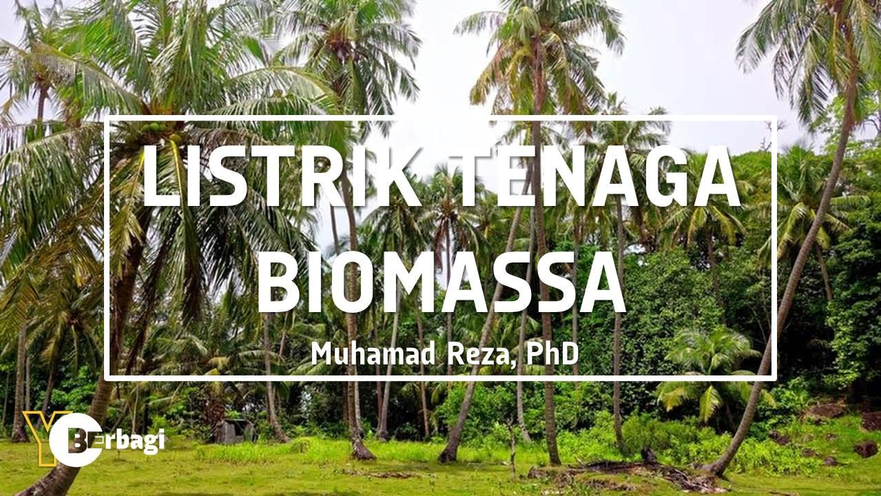 Pembangkit Listrik Tenaga Biomassa